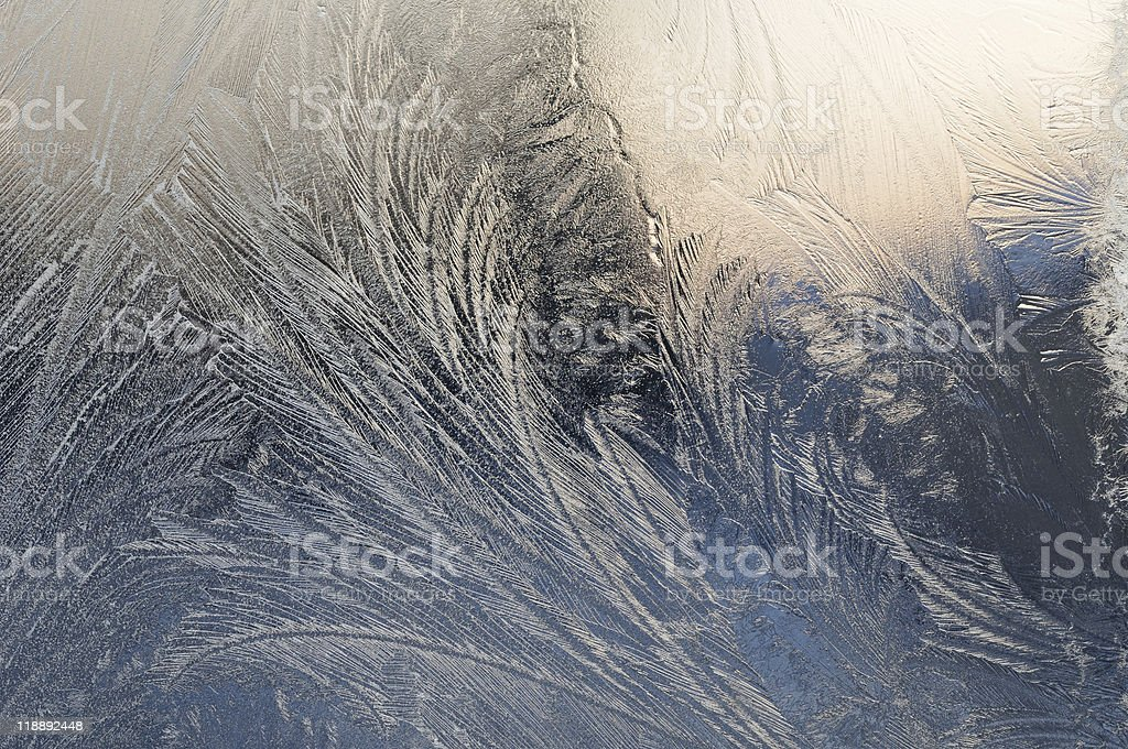 Winter royalty-free stock photo