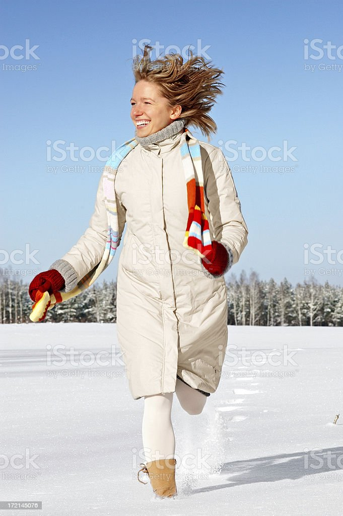 Winter (1) royalty-free stock photo