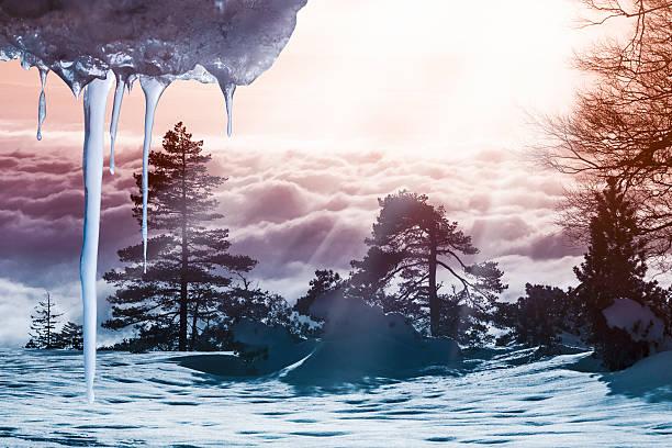 Winter - – Foto
