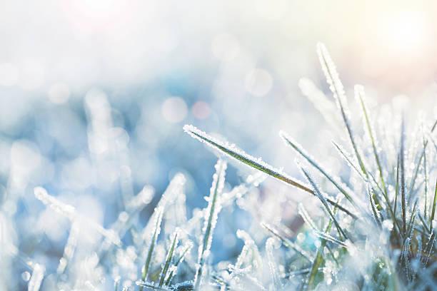зима - иней замёрзшая вода стоковые фото и изображения