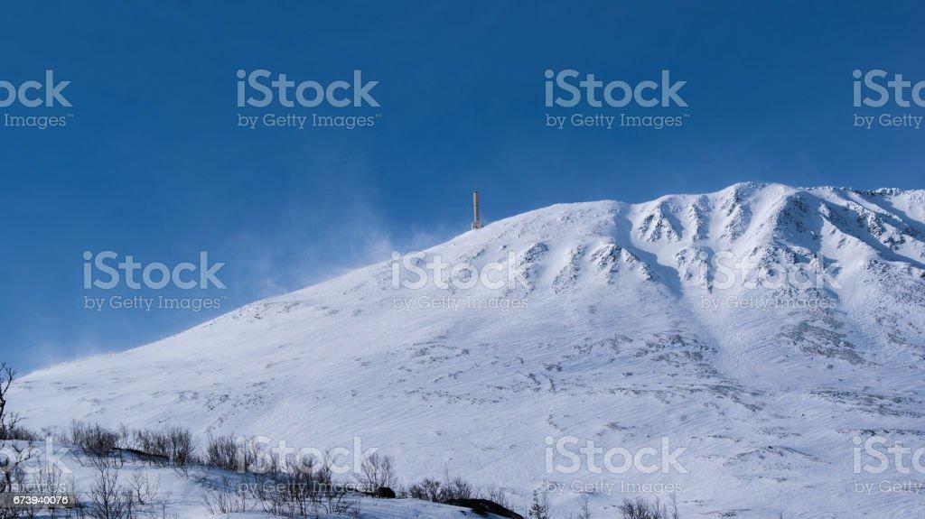 Winter foto de stock royalty-free
