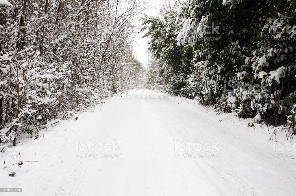 D'hiver photo libre de droits