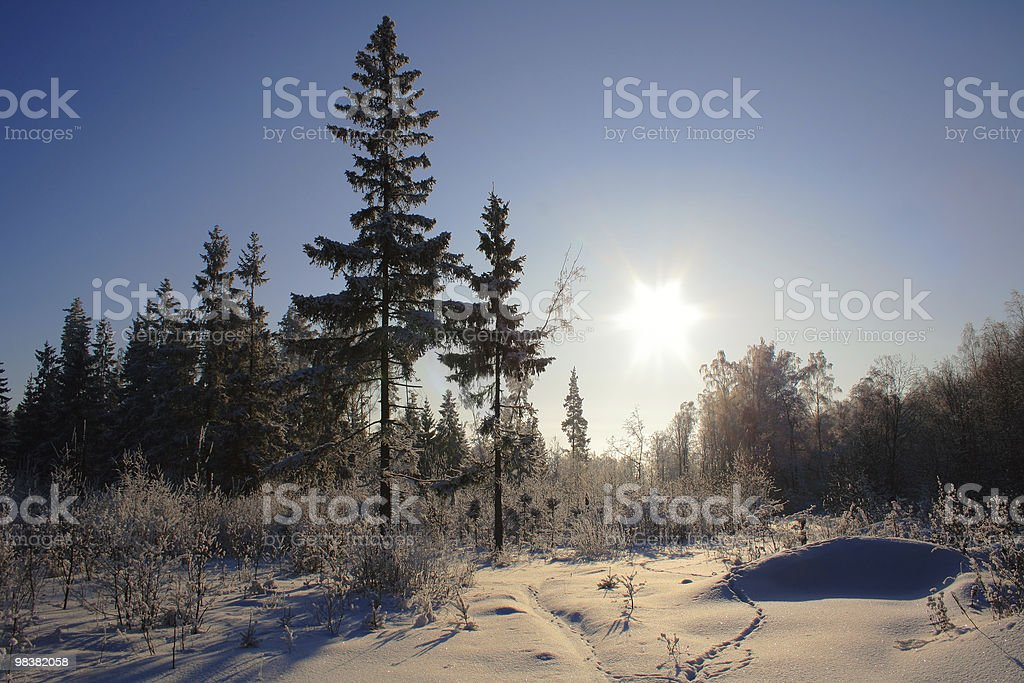 Inverno foto stock royalty-free