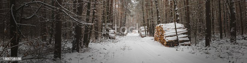 istock Winter pine forest under white snow. Winter forest landscape. Tall trees under snow cover. Snowy path during winter in the forest. 1300708156