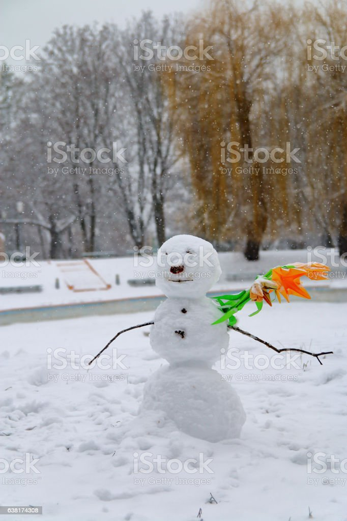 Winter portrait of a lonely stranger. stock photo