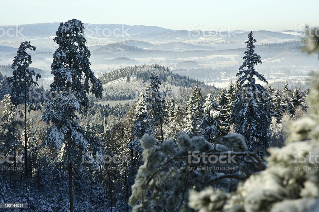Winter postcard royalty-free stock photo