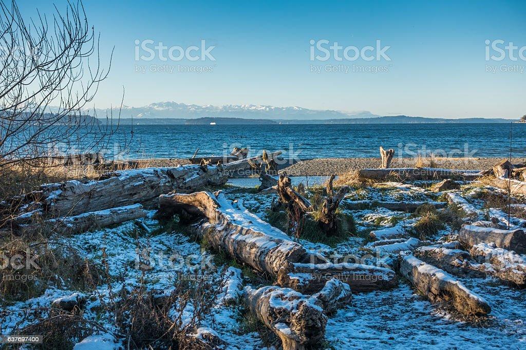 Winter Puget Sound Landscape stock photo