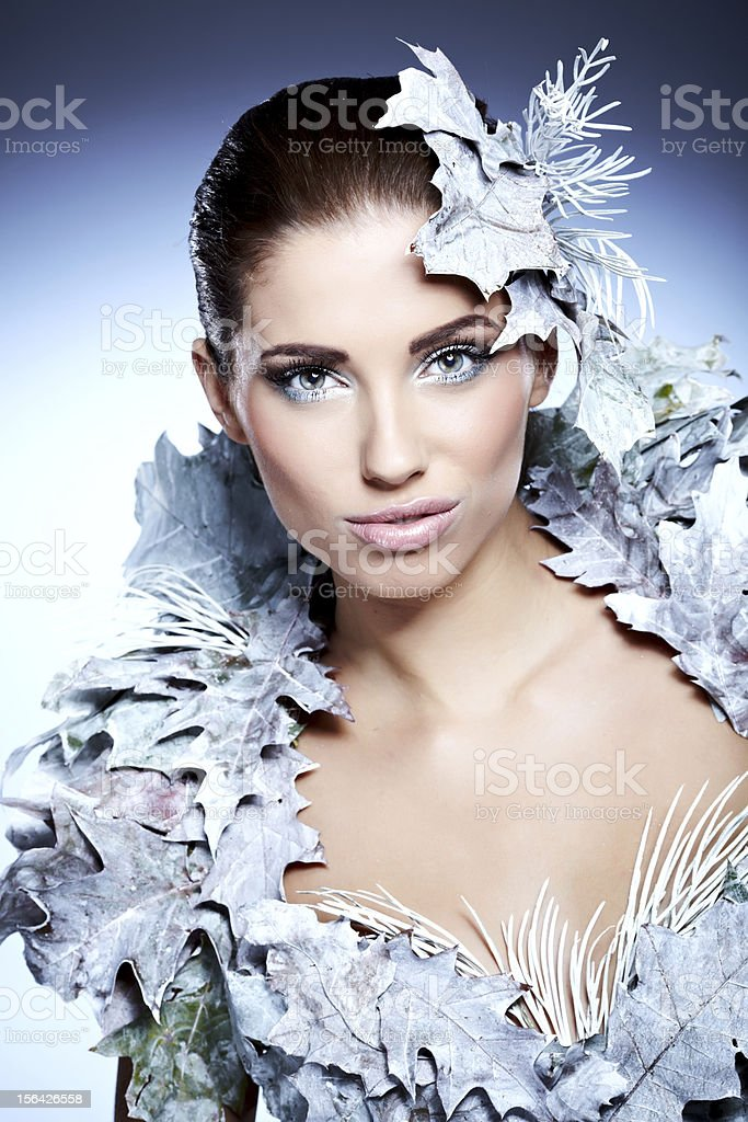 Winter Queen royalty-free stock photo
