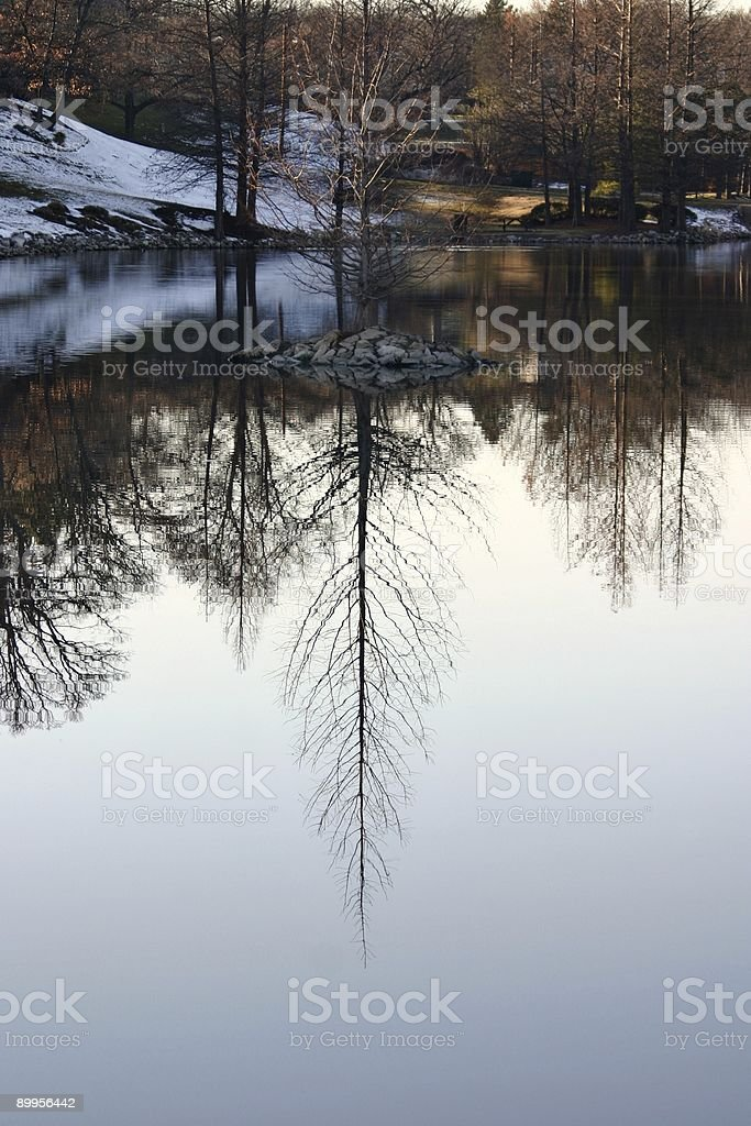 Winter reflections royalty-free stock photo