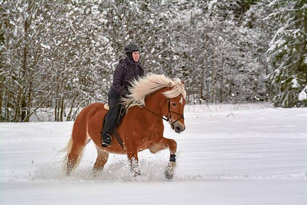 Winter rider picture id531250184?b=1&k=6&m=531250184&s=612x612&w=0&h=digjbu40zg1cxwqrocr6vbabx98fc62demo2nt6vhwg=