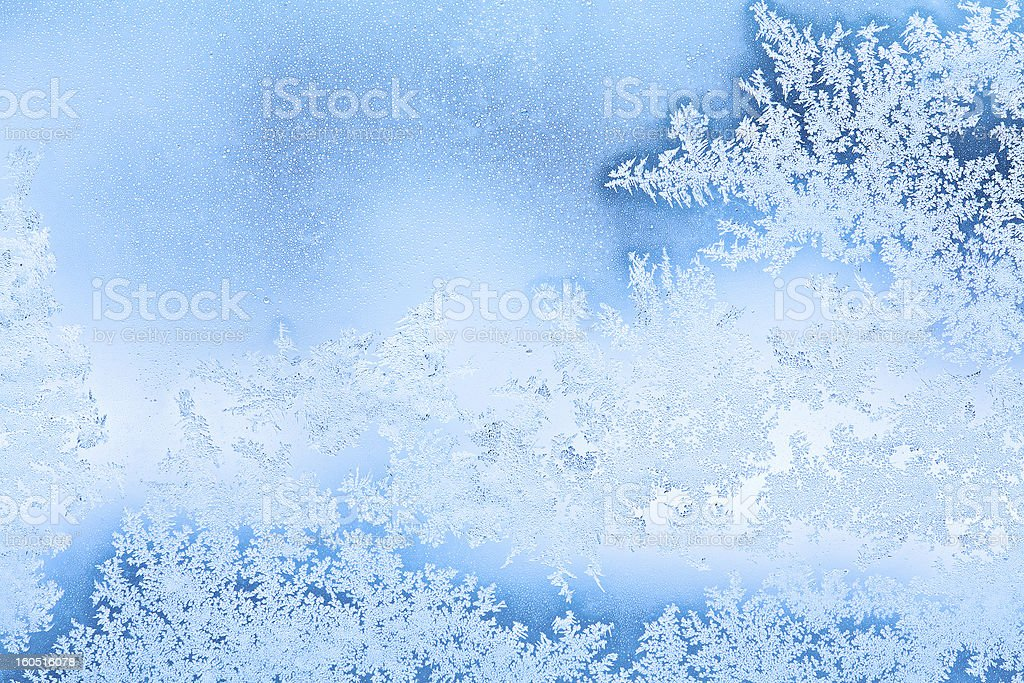 winter rime background royalty-free stock photo