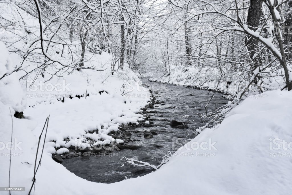 Winter river in the calm forest, trees covered with snow and small river flow landscape. stock photo