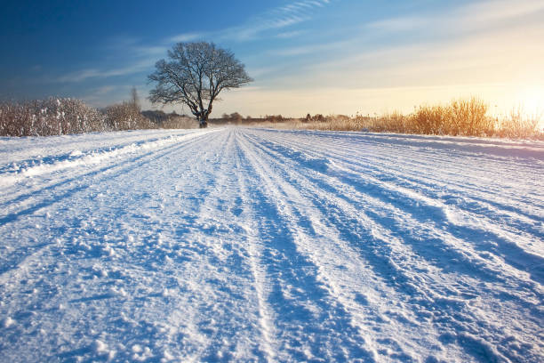 winter road at sunrise - diminishing perspective stock photos and pictures