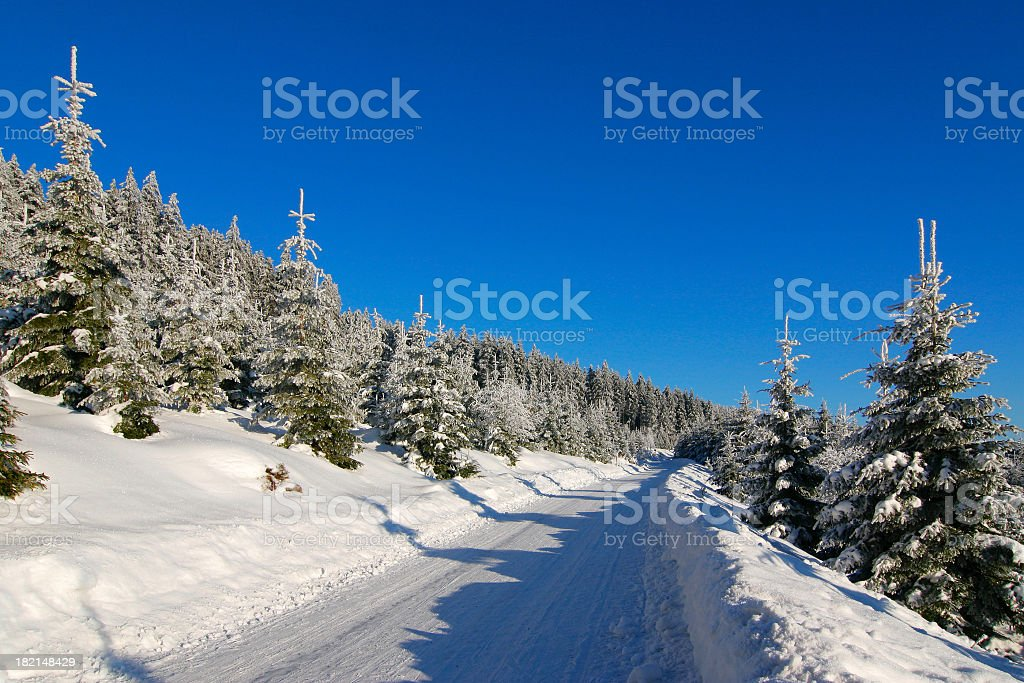 Winter Road III royalty-free stock photo