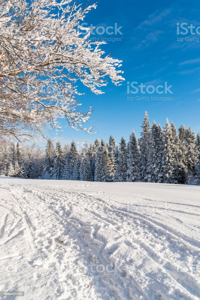 Winter road in Beskid Sadecki Mountains on sunny day, Poland stock photo