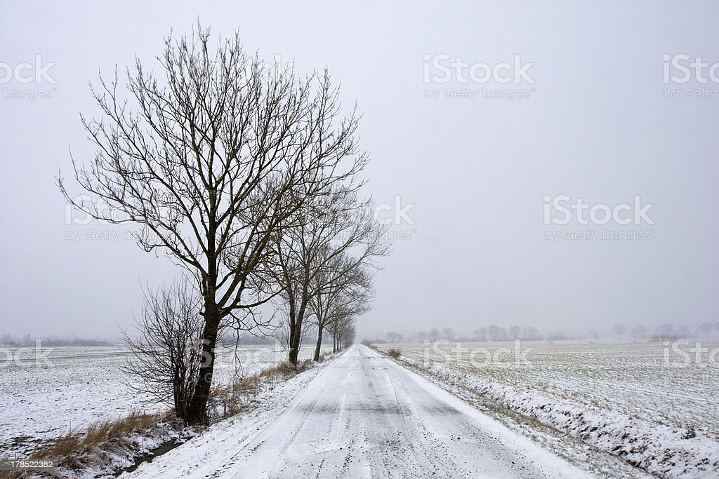 Winter road landscape royalty-free stock photo