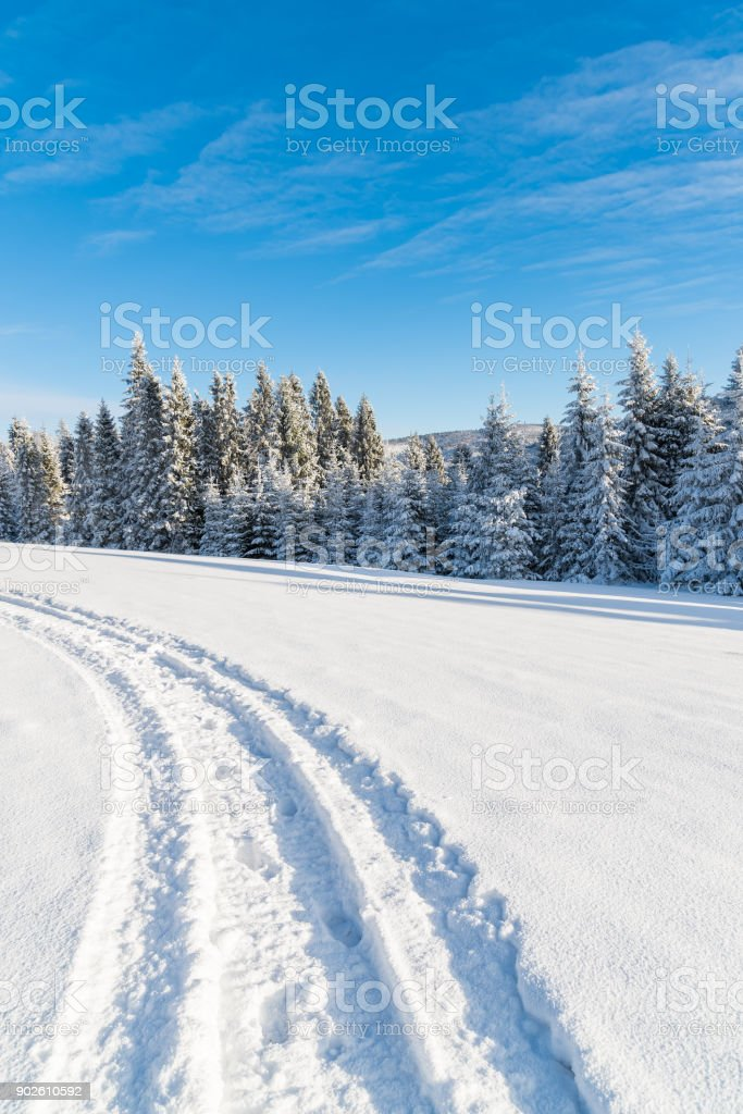 Winter road on sunny day in Beskid Sadecki Mountains, Poland stock photo