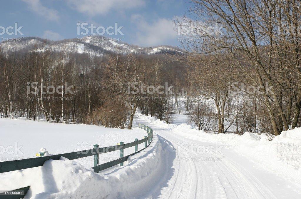 Winter Road royalty-free stock photo