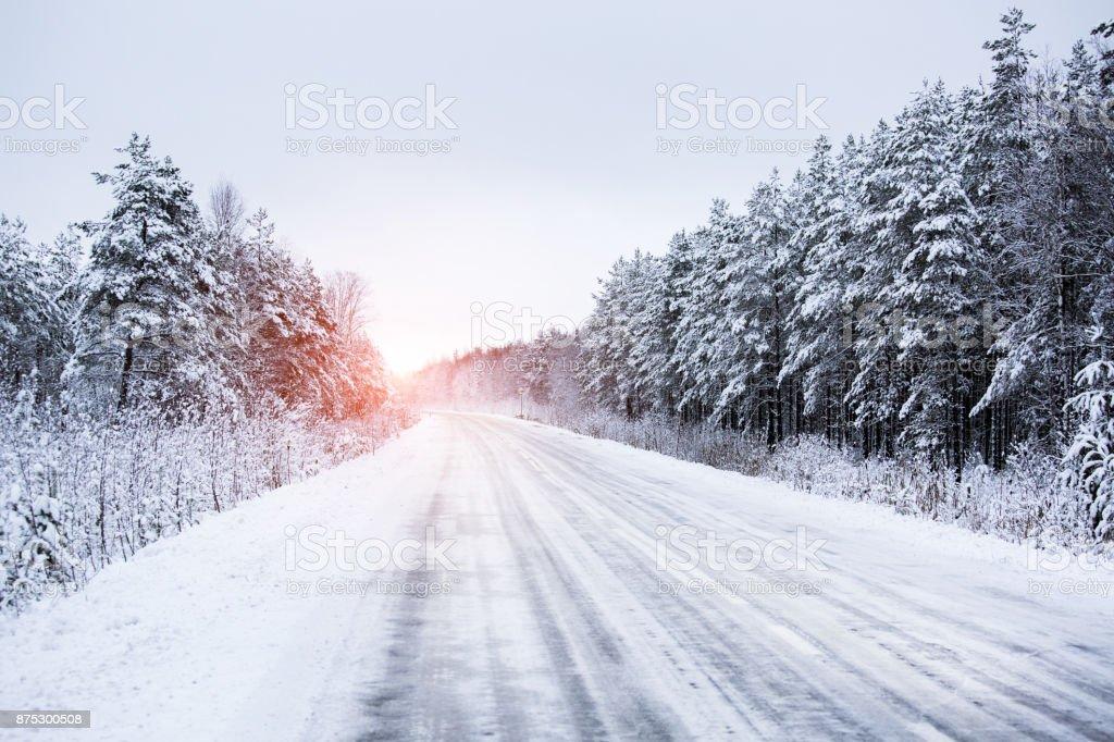 Vinterväg genom skogen bildbanksfoto