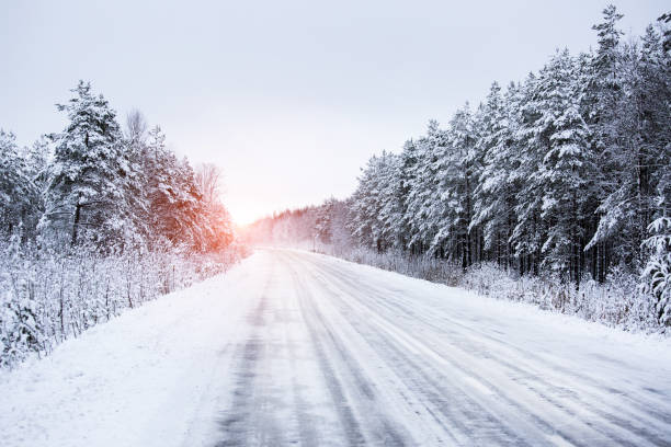 winter road through the forest - passagem de ano imagens e fotografias de stock