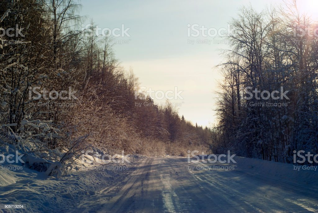 winter road through the forest stock photo