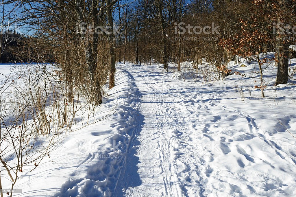 Winter road with ski tracks royalty-free stock photo