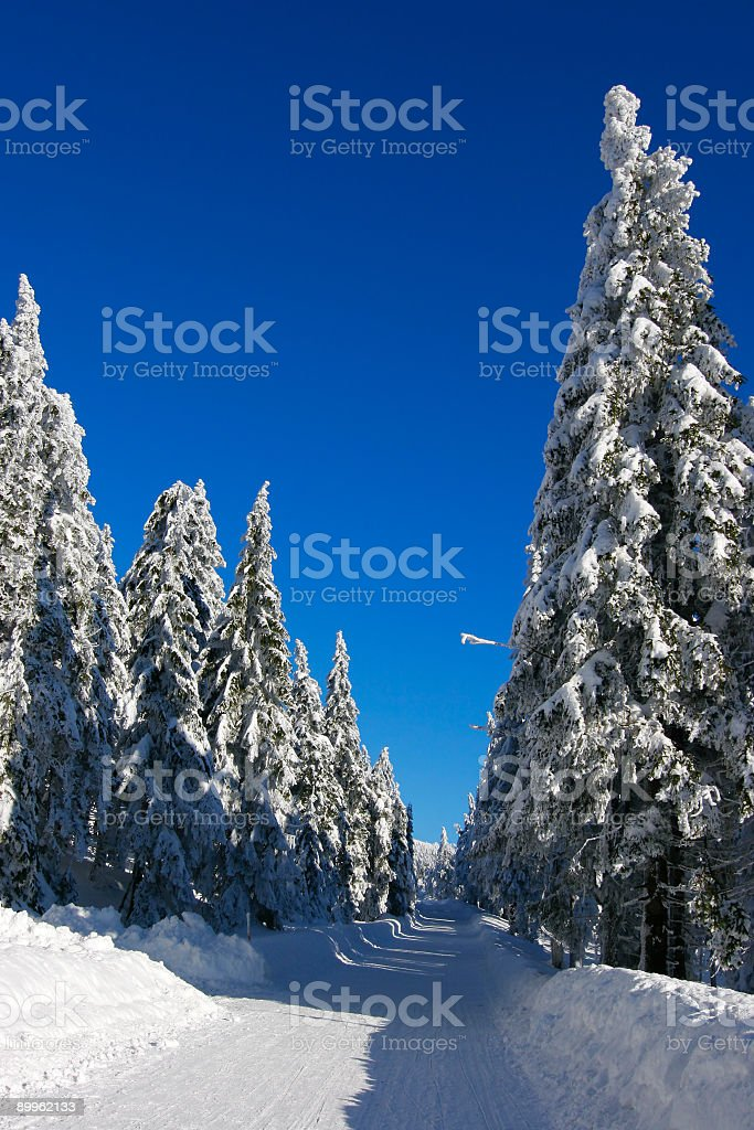 Winter Road X royalty-free stock photo