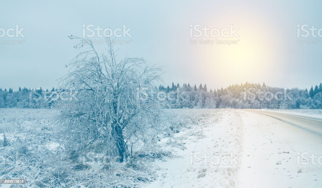 winter roadadverse driving conditionsfrosty landscapenature after the icy rain stock photo download image now istock https www istockphoto com photo winter road adverse driving conditions frosty landscape nature after the icy rain gm889913618 246650209