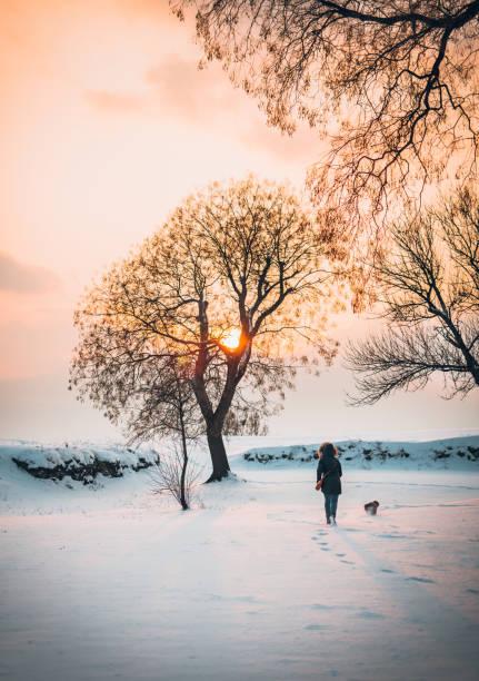 Winter running with dog stock photo