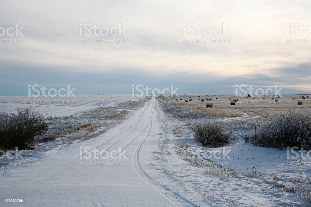 winter rural road and field stock photo