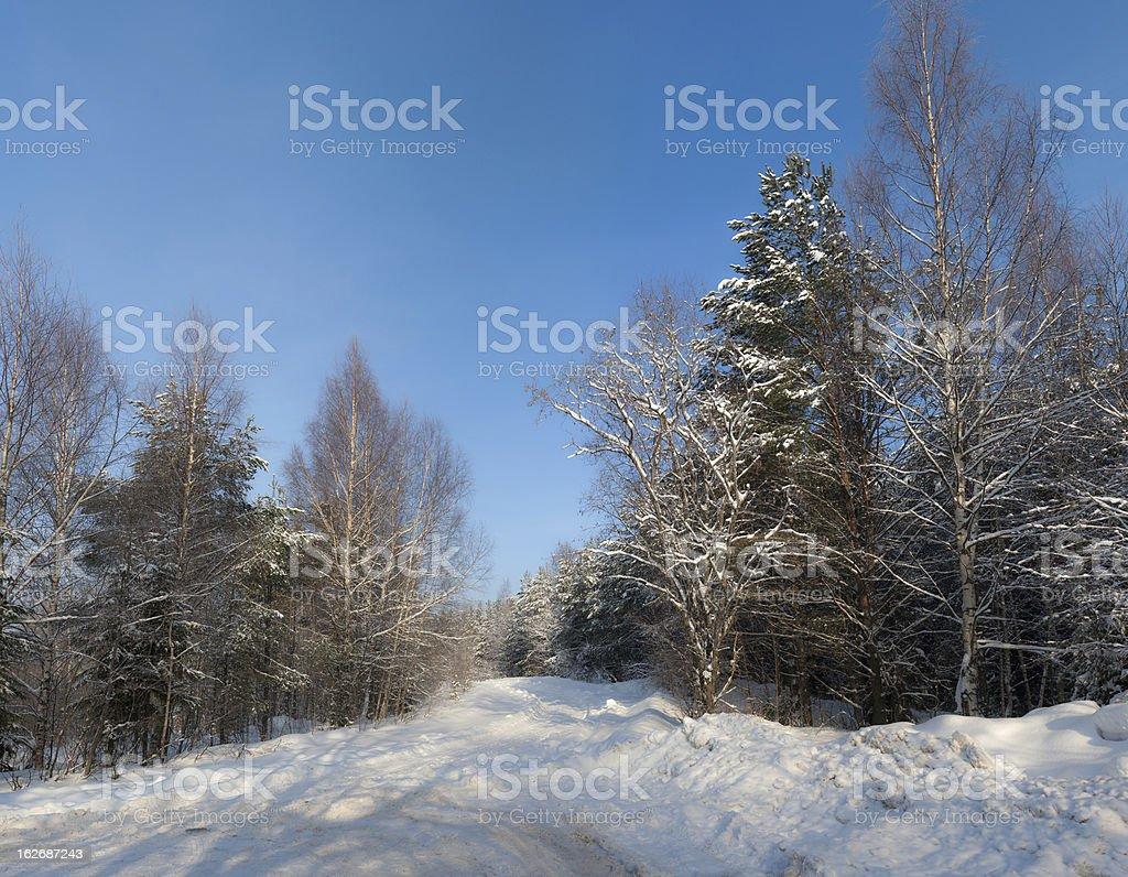 winter rural road royalty-free stock photo