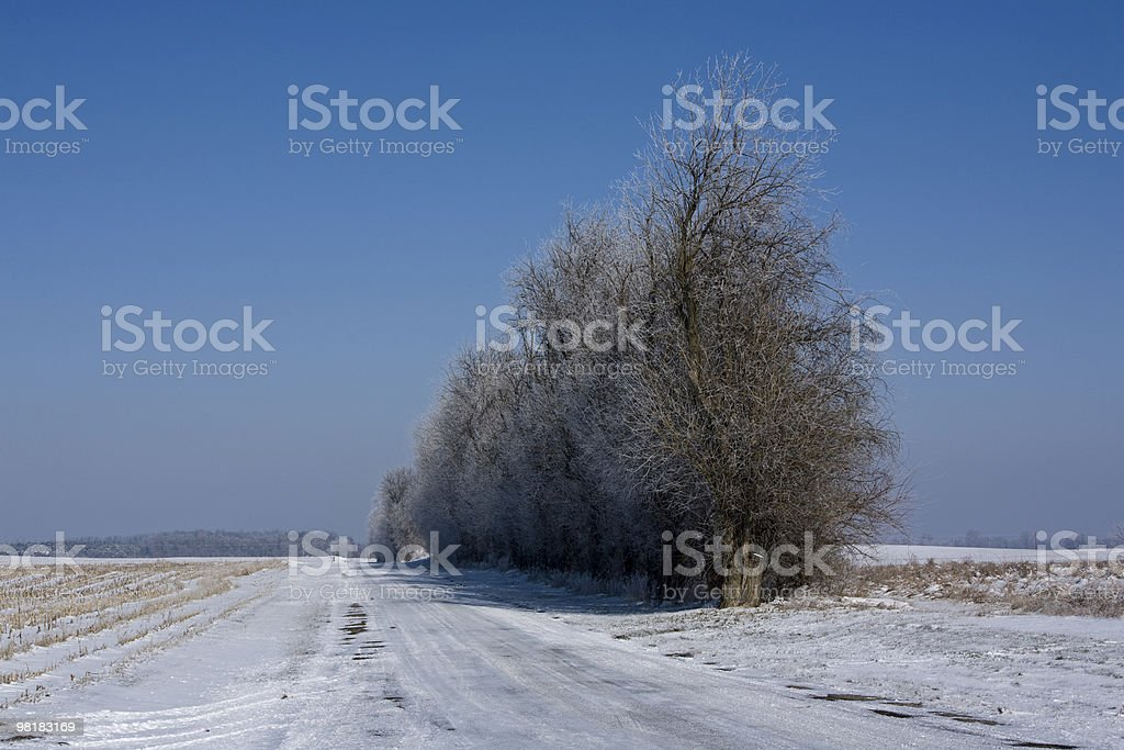 winter rural road royalty-free stock photo