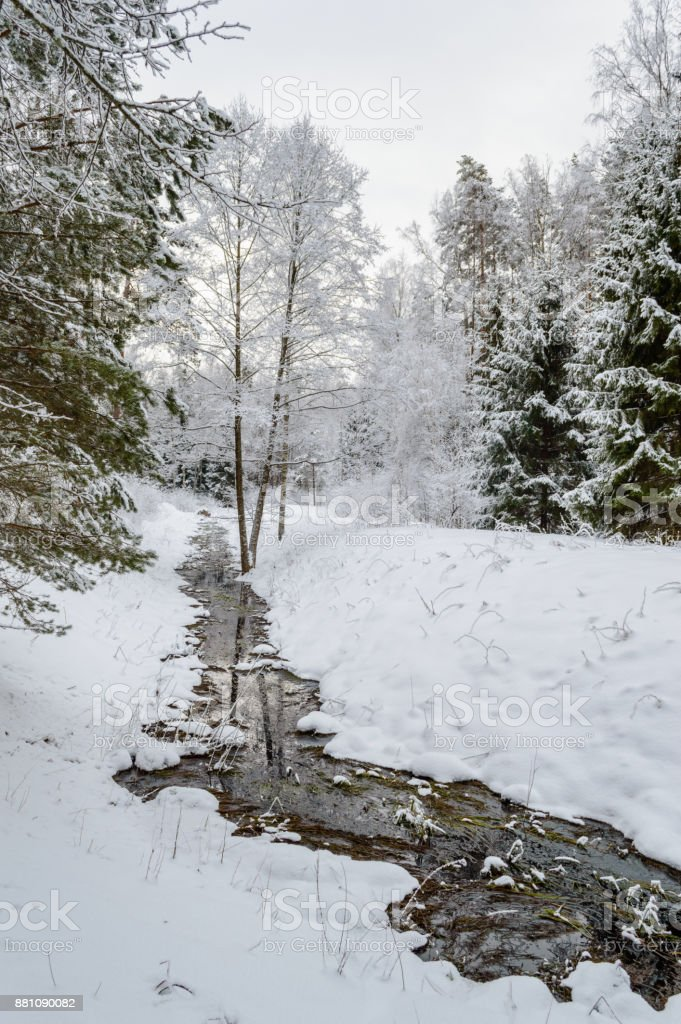 winter rural scene with snow and white fields stock photo