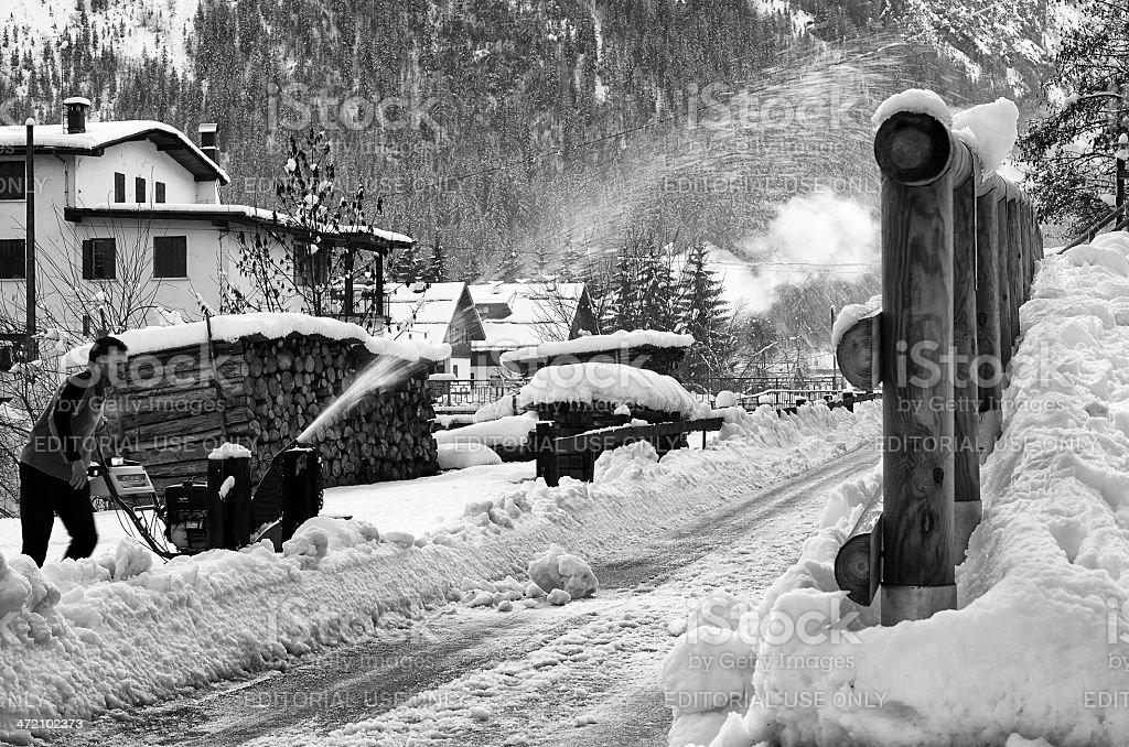 Winter Scene. Black and White royalty-free stock photo
