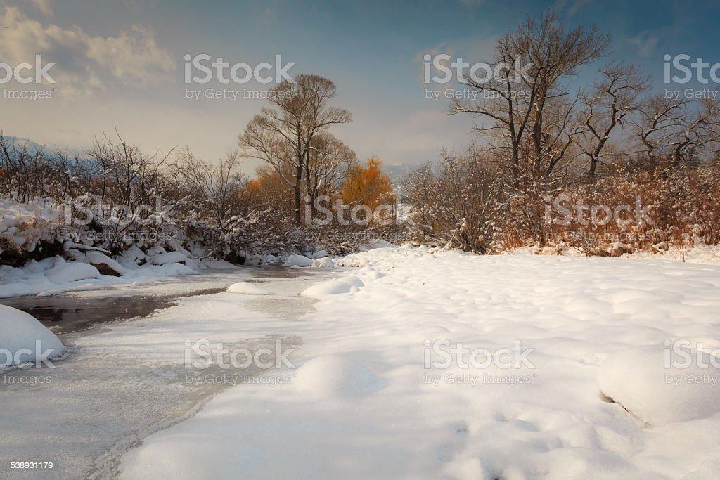 Winter Scene in Colorado covered in Snow stock photo