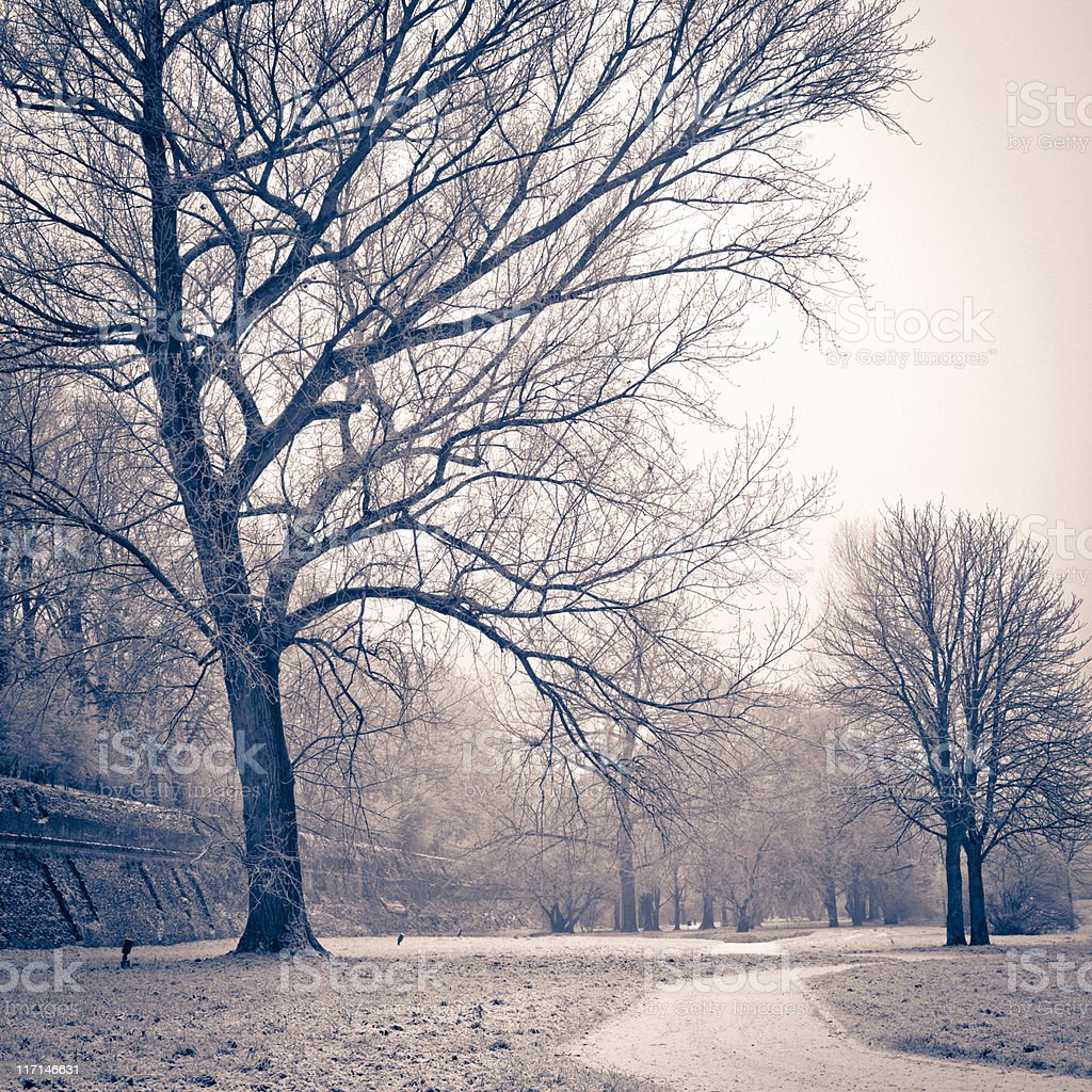 Winter Scene in Sepia, Countryside Nobody royalty-free stock photo