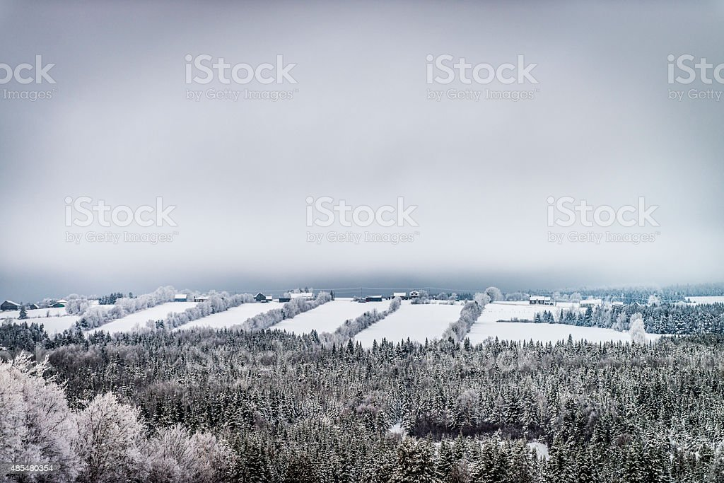 Winter scene in the country stock photo