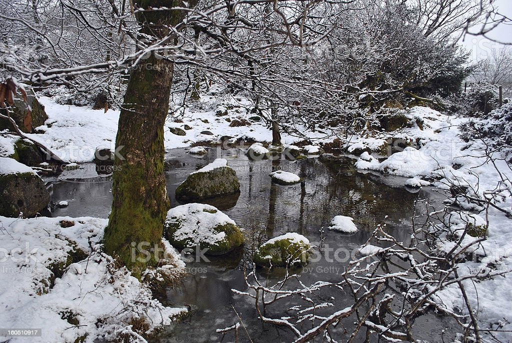 winter scene in wicklow ireland royalty-free stock photo