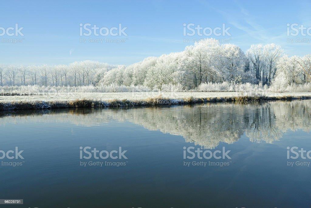 Scena invernale foto stock royalty-free