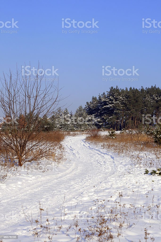Winter scene royalty-free stock photo