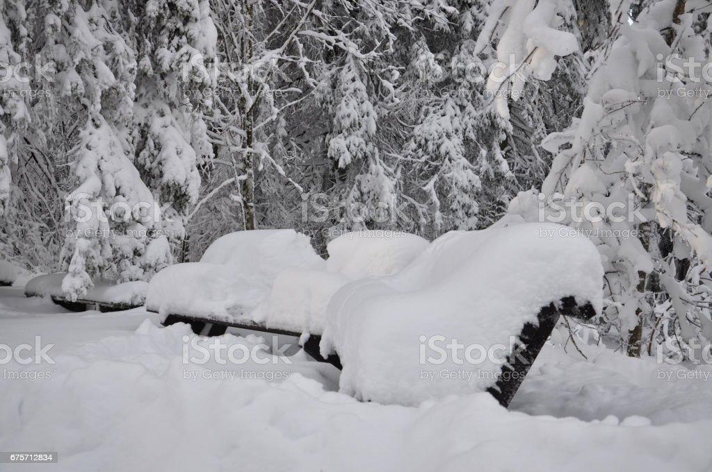 冬天的場景。雪覆蓋在公園長椅。 免版稅 stock photo