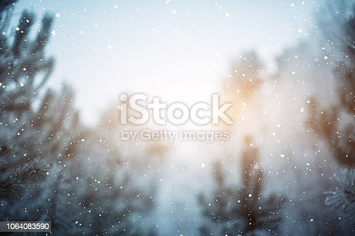 istock Winter scene - snowfall in the woods 1064083590