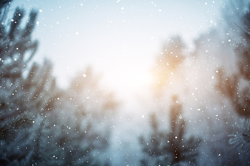 snowfall on the blurred background. winter background