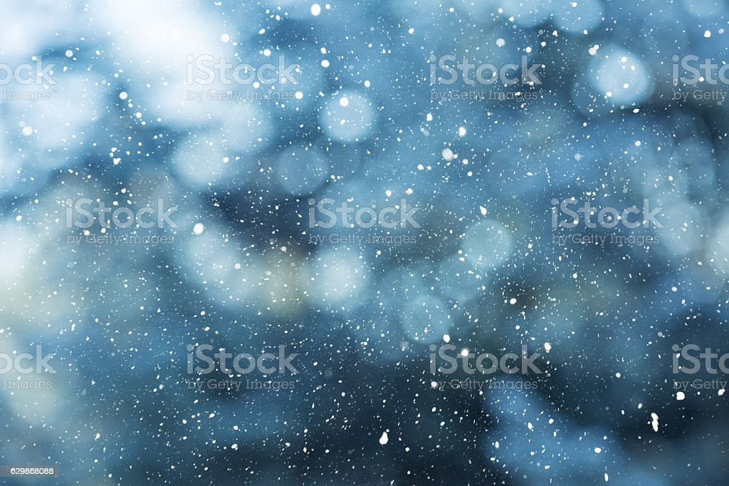 Winter scene - snowfall on the blurred background stock photo