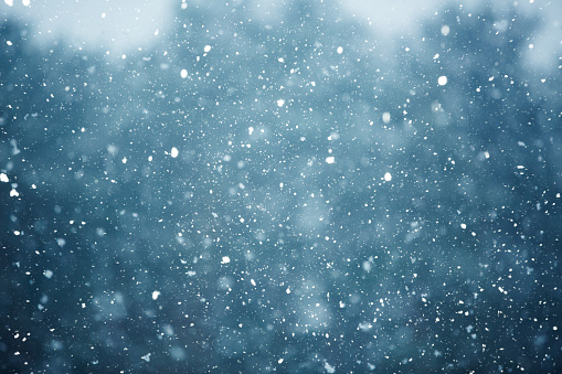 Winter scene - snowfall on the blurred background