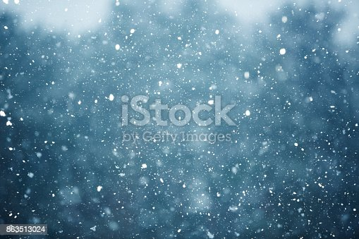 snowfall on the blurred background