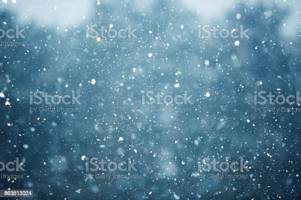 Photo of Winter scene - snowfall on the blurred background