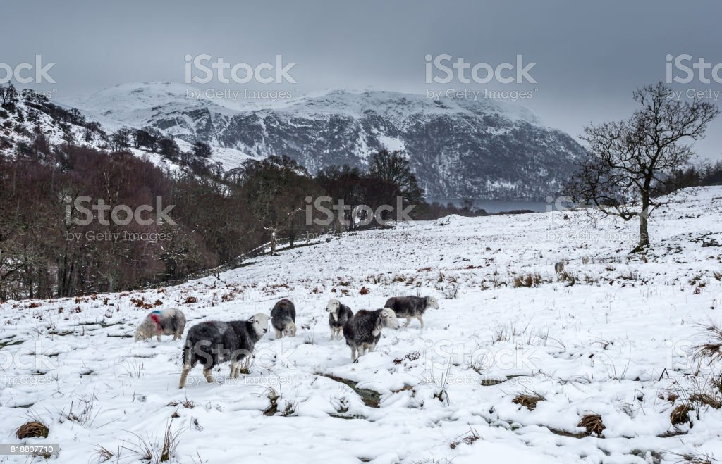 Winter Scene - Ullswater stock photo