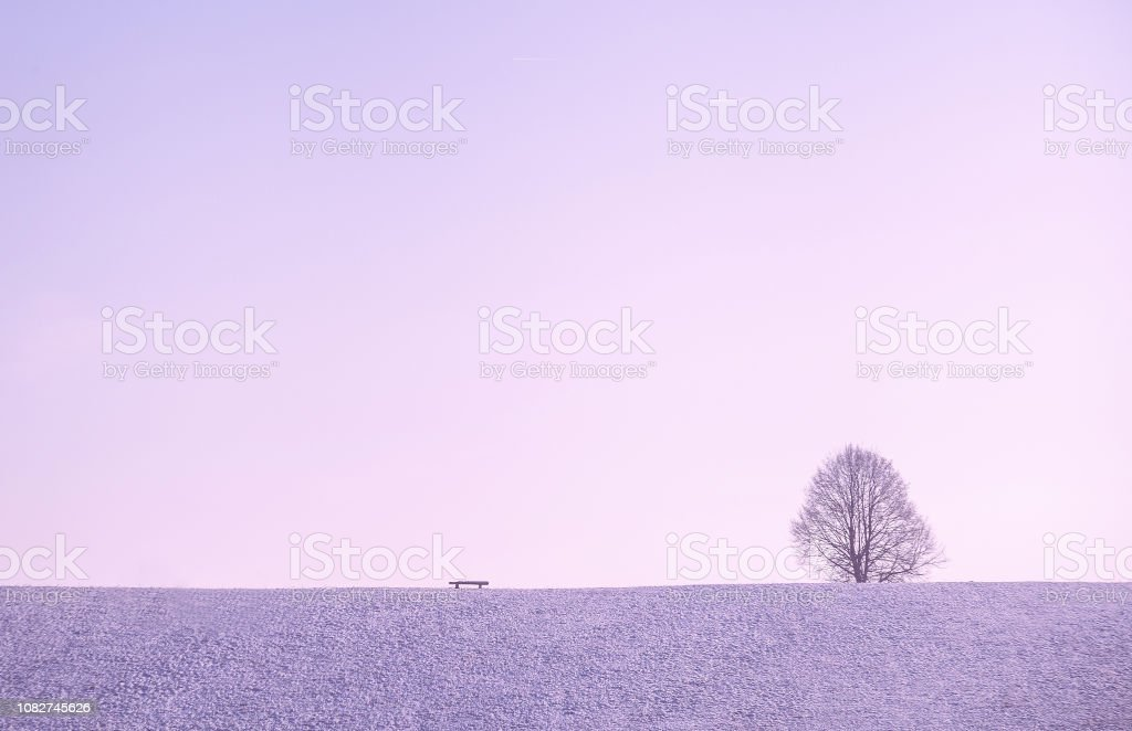 Winter scene with a lonely leafless tree, bench and cloudless sky in minimalism style. stock photo