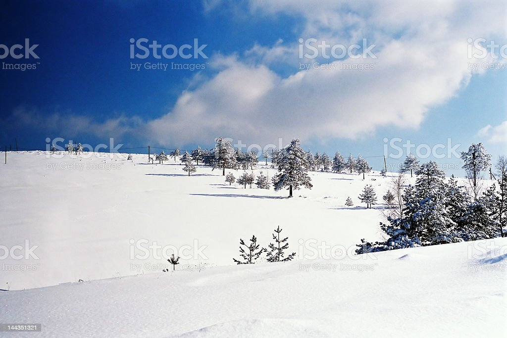 Winter Scene with blue sky royalty-free stock photo